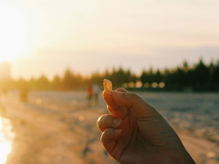 Throwback last time at the beach with Ivy.She found this cute little seashell. Photography Beach Sunset Seashells Minimalobsession EyeEm Best Shots ArtWork Perfect Match