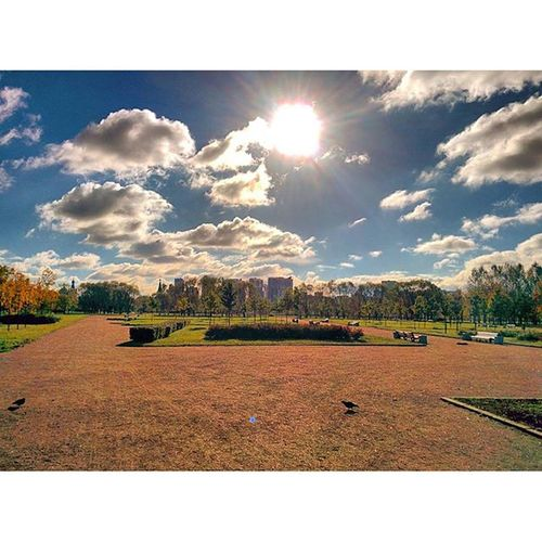 Sun and Clouds over the Pulkovo Park , spb