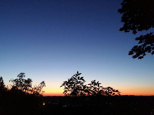 Sonnenuntergang Stadtwald  Sauerland