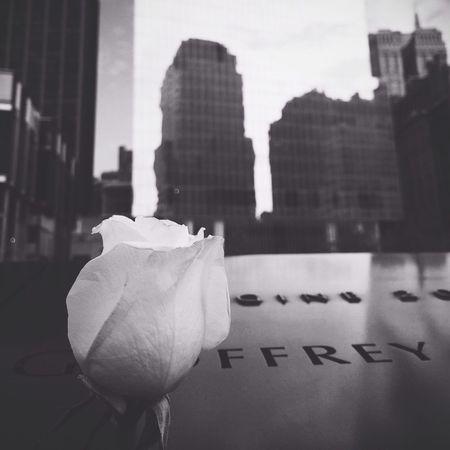 9/11 Memorial Blackandwhite Flower Roses IPSStory