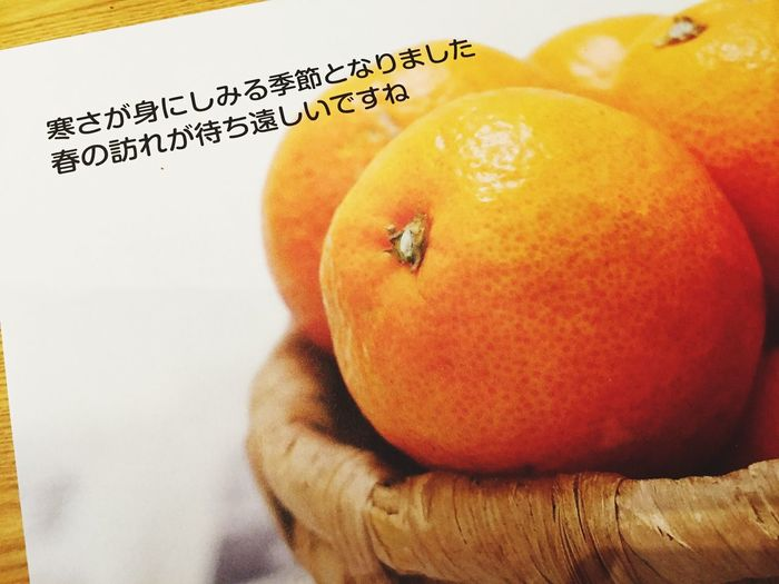 Healthy Eating Fruit Orange Color Orange - Fruit Food Food And Drink Close-up Freshness Yellow Apple No People Indoors  Day はるかとランチ みーるまーま いっぷく ハラクチ
