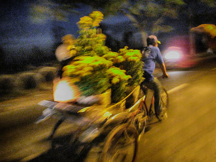 No Edits No Filters Blurred Motion Boys Casual Clothing Childhood Flowers Full Length Leisure Activity Lifestyles Men Motion Mouvement Mouving Night Person Speed No Filter, No Edit, Just Photography Street Transportation Tricycle My Commute The Street Photographer - 2016 EyeEm Awards Photography In Motion Blurred In Motion Need For Speed The Following