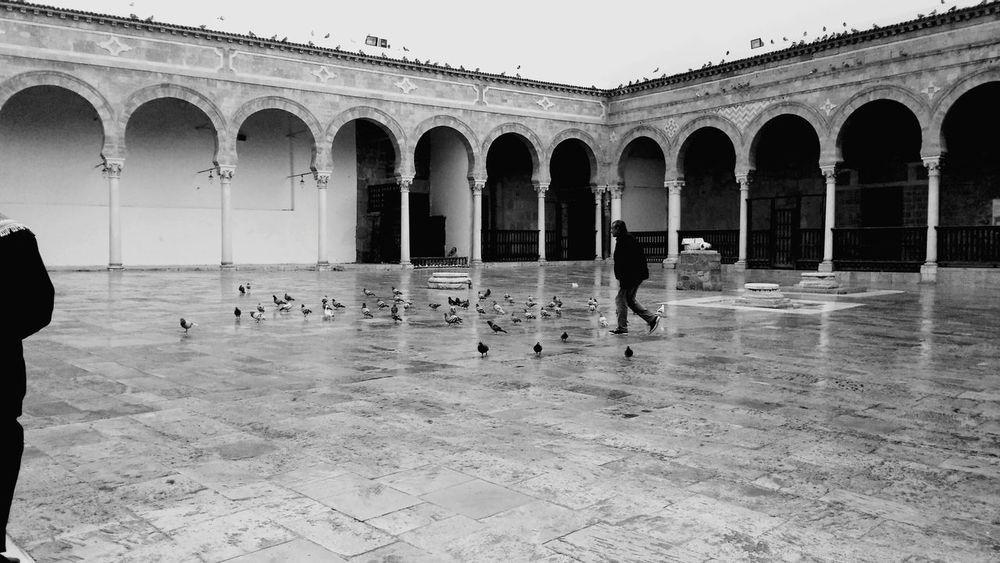 Wikilovesmonuments Wikilovesafrica Ilovetunisia Eyeem Tunisia Mosquée Zitouna