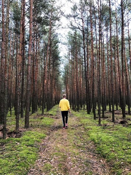 Woods Yellow Color Yellow Clothes Yellow Green Color Green Tree Area Trees Trees And Sky Tree Plant Rear View Real People Land One Person Walking Forest Beauty In Nature The Way Forward Nature