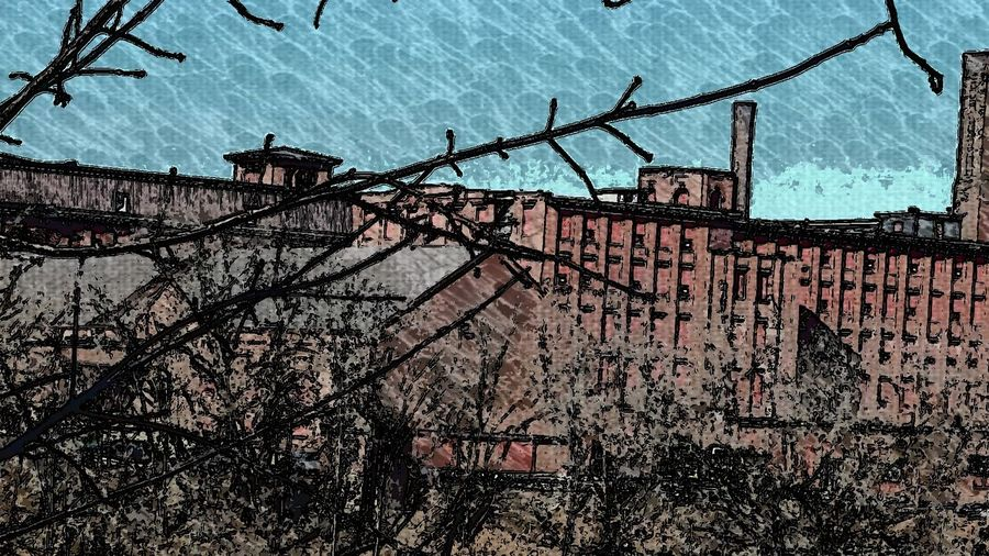 Heritage Textile Mill Outdoors Day No People Clear Sky In A Row Textured  Built Structure Architecture Smokestack Shrubs And Branches In Foreground Red Brick Black Engaved