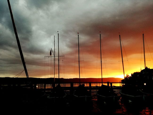 Bodensee Seeling Harbour Sunset Vacation Colour Of Life