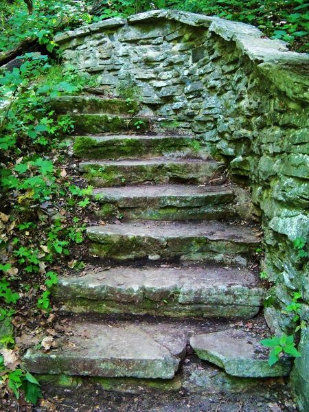 Stairway in the Woods Close-up Day Deterioration Diminishing Perspective Forest Forest Path Green Color Growth McCormick's Creek Nature No People Old Outdoors Plant Stairs Stairway Steps Stone Stone Material Stone Wall The Way Forward Tranquility Tree Woods Hidden Gems  Visual Creativity The Great Outdoors - 2018 EyeEm Awards