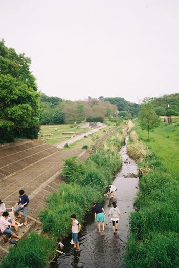 (Fuchu, April 2016, Yashica EZ S Zoom 70, Kodak Color Plus 200) 35mm Film Buy This Bitch, Film Photography First Eyeem Photo Fuchu Green Color Japan Kodak Colorplus200 Leisure Activity Lifestyles Medium Group Of People Nature Nature Outdoors River Scenics Tokyo Tokyo,Japan Vacations Water Yashica First Eyeem Photo
