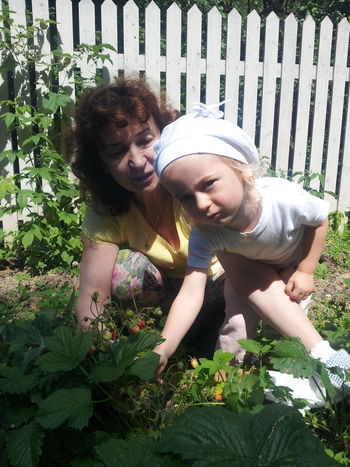 """The invasion of the children on the beds with strawberries. """"Нашествие 2016"""" ... детей на грядки с клубникой. Bed Berries Bliss . Childhood Children Children Photography Childrenphoto Day Garden Garden Bed Garden Photography Happiness Happiness ♡ Happy Happy :) Happy People Happy Time Kids Kidsphotography Outdoors Strawberry Strawberry Season Summer Summer ☀ Young"""