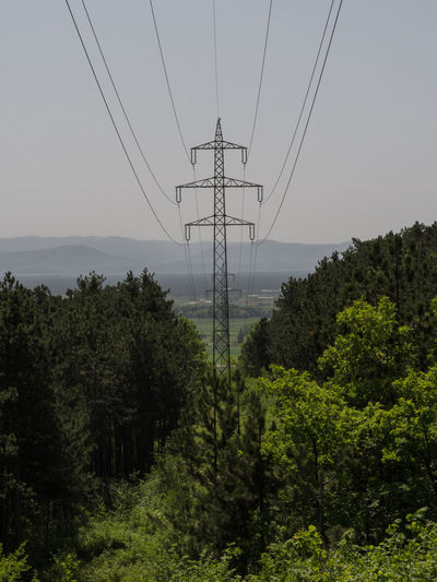 Cloudy Electrical Tower Green Sunny Cable Connection Day Electrical Electrical Component Electrical Equipment Electricity  Environment Forest Hazy  Hazy Day Land Landscape Nature Outdoors Plant Power Line  Power Supply Sky Technology Tree