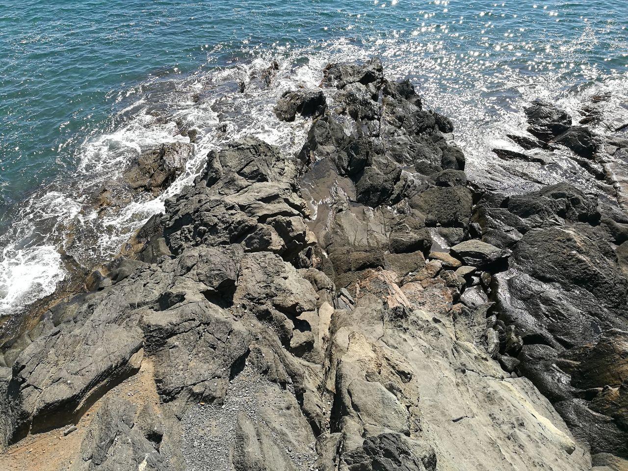 Close-Up Of Sea Shore Against Sky