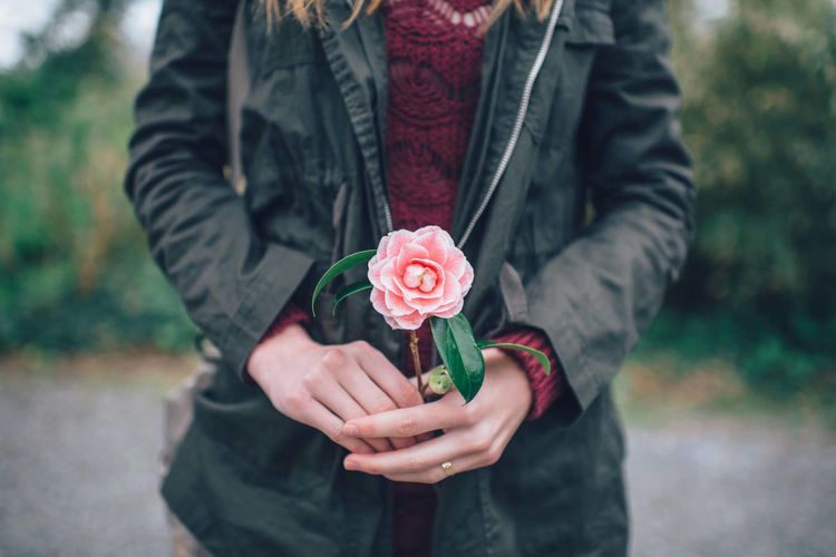 Close-up of person holding rose