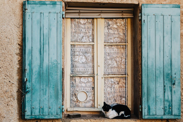 Animal Themes Architecture Black And White Building Exterior Built Structure Cat Cats Close-up Day Domestic Animals Domestic Cat Door Doorway Feline Mammal No People One Animal Outdoors Pets Window Window Sill Wood - Material