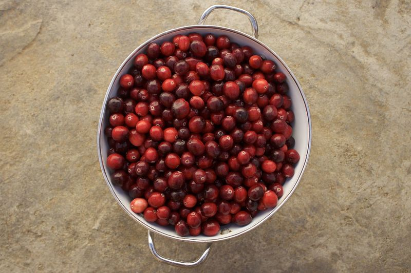 High angle view of cranberries in bowl