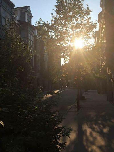 A beautiful start to the day!! EyeEm Best Shots ATouristInMyOwnCity ScenesFromTheStreet TheSidewalksOfTheCity ABeautifulMorning
