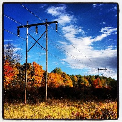 The Grid in Color. #miltonvt #vt #foliage Electric Vermont_scenery Foliage 802 Grid Miltonvt Iphoneonly Igharjit Photooftheday Vermontbyvermonters Picoftheday Vt_scene Vermont Vermont_scene Igvermont Igvt All_shots Vt_landscape Instamood Bestoftheday Vermont_foliage Instagood Fallinvt Webstagram Vt_foliage Vt Colors Vt_scenery