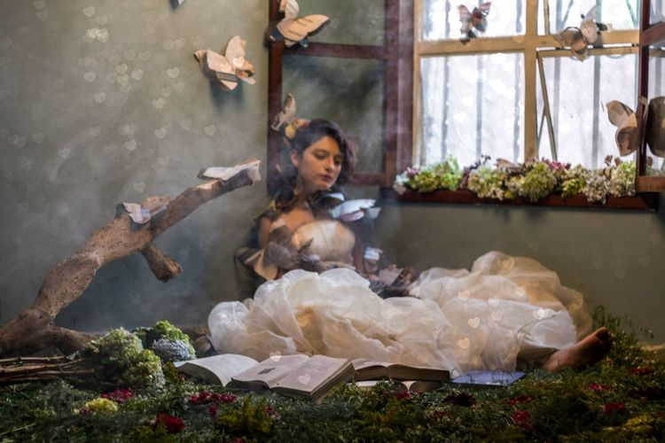Fabuloso Mariposas Fantasy Fantasy Photography