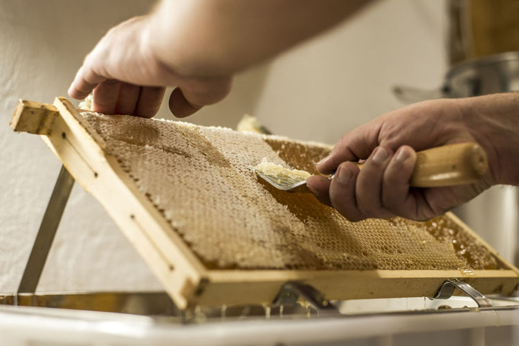 Man removing wax from honeycomb