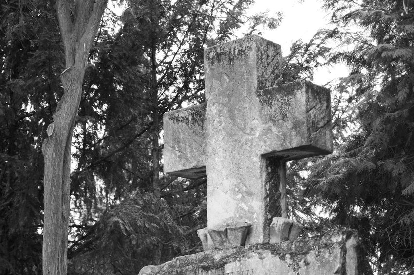 Cross Graveyard Tour Personal Perspective Focus On Foreground Art Photography Things Around Me Art Is Everywhere On Tour Christianity Graveyard Surface Mourning Card Card Design Black And White Photography Structure Arts And Crafts Architectural Details While Walking Outdoors Photography Statues And Monuments Evanescence Graveyard Beauty Believe Love Hope Hope Believe