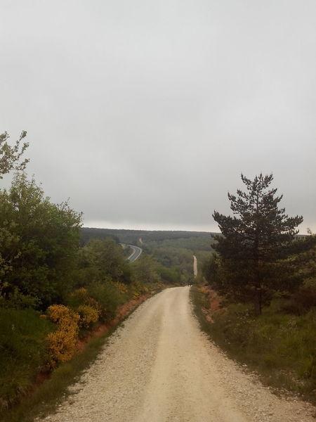 Camino CaminodeSantiago El Camino De Santiago Jakobsweg Pilgern Pilgrimage Way Way Of Saint James Weg