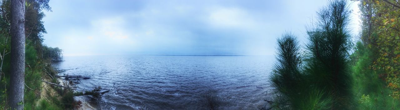 Foggy morning view of the Neuse River from Flanner's Beach Woods. Riverscape Riverside River Panoramic Photography Panoramic Panorama Foggy Morning Foggy Water Nature Scenics Beauty In Nature Sea Day Sky Tranquil Scene Tranquility Tree No People Outdoors Horizon Over Water