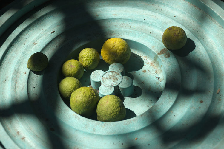 Kaffir Lime captured in Thailand Citrus  Citrus Fruit Citrus Fruits Citrusfruit  Day Freshness Fruit Group Of Objects Kaffir Lime Makrut Lime Shape