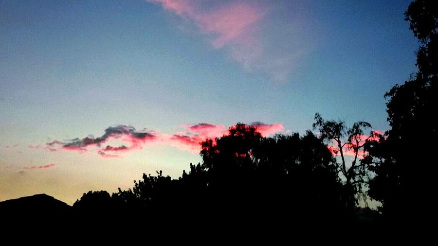 Light And Shadow Mobilephotography Colorfull Life Nature On Your Doorstep EyeEm Best Shots - Sunsets + Sunrise Sunset Silhouettes EyeEm Gallery EyeEm Best Shots