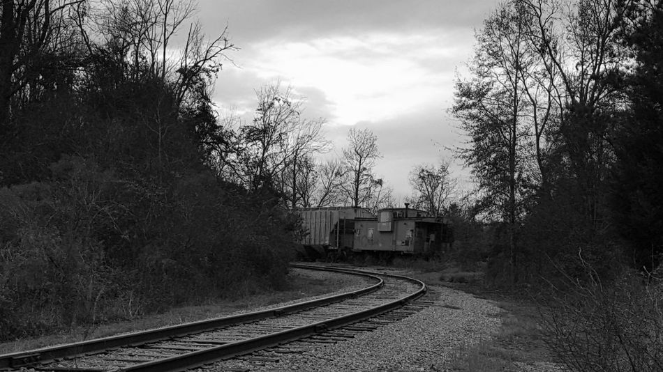Train Train Tracks Black And White Photography Blackandwhite Photography EyeEm Best Shots The Great Outdoors - 2016 EyeEm Awards The Street Photographer - 2016 EyeEm Awards TheTraveler Travel Travel Photography Tracks Railroad Tracks United States Georgia Shotoftheday Southern Southern Living Southern Life South
