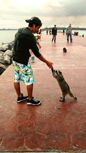 The Year On Eyeem Animals Handshake Adventure That's Me Traveling Im Javier, nice to meet you My Best Photo 2014