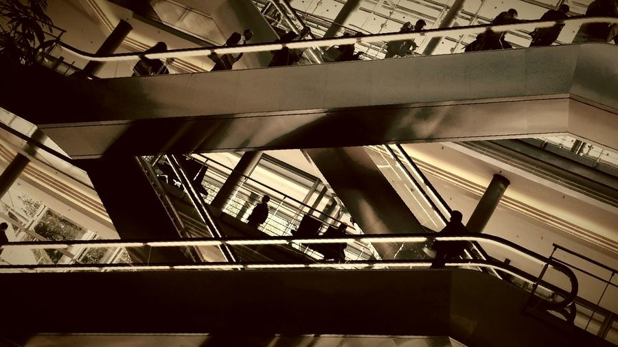 Ants Tadaa Community Urban Geometry Silhouette People Watching