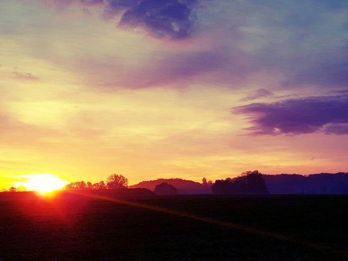 Hübsches von heute.... 😜😍☝️ 🌞 Sunrise Sunrise_sunsets_aroundworld Good Morning Ruhrgebiet Sunlovers Sunstalker Romantic Sky Atmospheric Mood Nature EyeEm Best Shots EyeEm Nature Lover Tree Rural Scene Multi Colored Sunlight Silhouette Dramatic Sky Sky Landscape Atmospheric Mood Shining Streaming Majestic Foggy Sky Only Sun