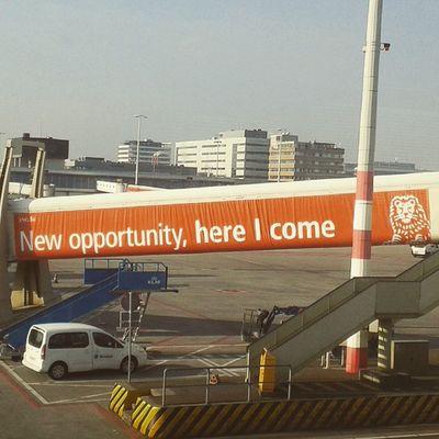 Mensajes interesantes Amsterdam ( esperando vuelo)