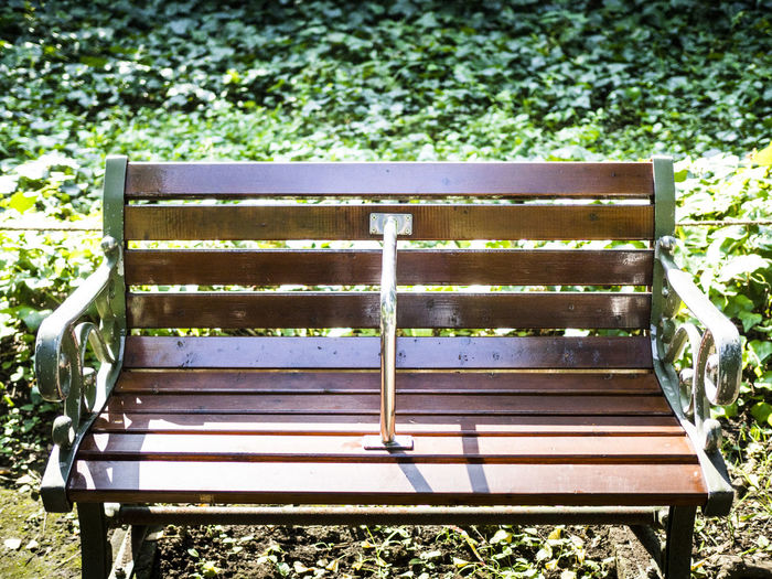 Empty bench in grass