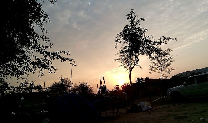 Nature No People Outdoors Beauty In Nature Day Tree Nature Photography Creative Photography Creative Light And Shadow Natue Photography Village Style Sun Rises For A New Day Village Scene Village Photography Morning Light Lifeisbeautiful Beautiful World We Have