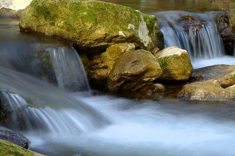 Water River Fish Life Waterfalls