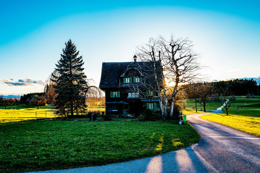 Architecture Bare Tree Blue Building Exterior Built Structure Clear Sky Day Field Footpath Gormund Grass Grassy Green Color Growth Kapelle Lawn Nature Park - Man Made Space Shadow Sky Sunlight Tree