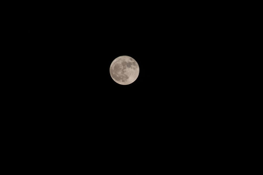 supermoon rising in Western New York Astronomy Beauty In Nature Moon Moon Surface Night No People Outdoors Scenics Supermoon2017