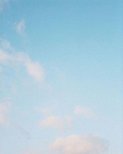 Portra400 Olympus倶楽部 Olympuspeneed Myolympusstyle Film Filmphotography Filmcamera オリンパス倶楽部 オリンパスペンEED フィルム写真普及委員会 フィルム写真 フィルムに恋してる Kodak フィルム ふぃるむカメラ フィルム部 ハーフサイズカメラ 写真好きな人と繋がりたい ファインダー越しの私の世界 カメラ好きな人と繋がりたい カメラ日和 お写んぽ コダック ポートラ400 Halfsizecamera sky 空 bluesky オリンパスPENEED