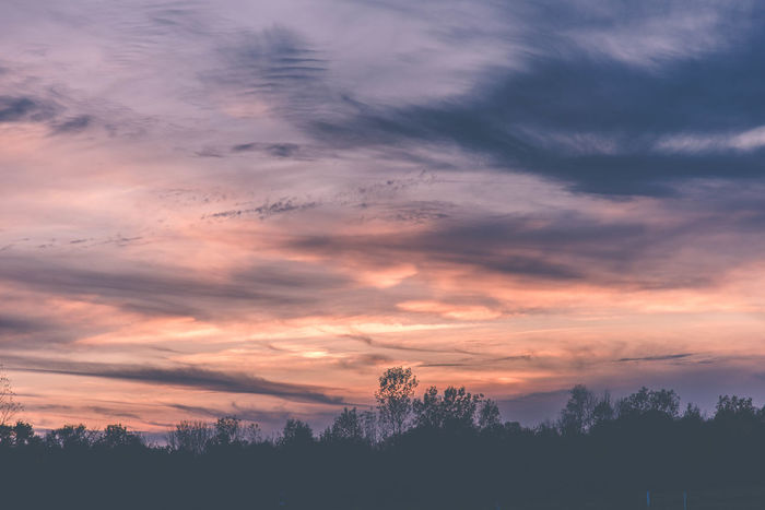 Winter sunset, orange and purple Beauty In Nature Cloud - Sky Day Landscape Nature No People Outdoors Scenics Silhouette Sky Sunset Tranquil Scene Tranquility Tree