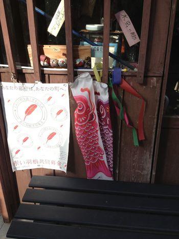 koinobori Trip Japan Culture Asian Culture ASIA Japan Koinobori