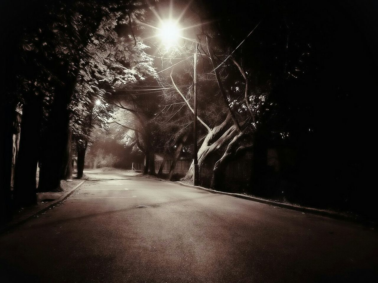 road, tree, the way forward, night, outdoors, no people, tranquility, nature, illuminated, sky