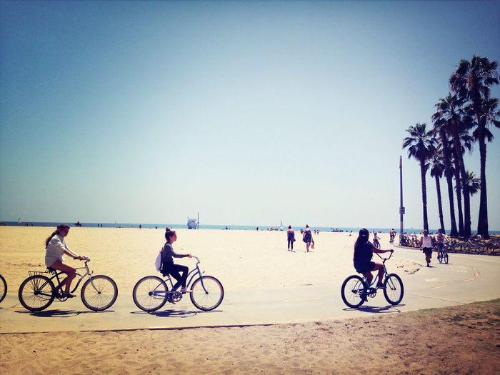 California Bike Beach Venice