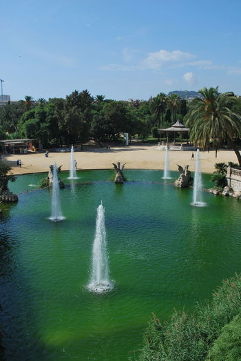Barcelona Barcelona, Spain Catalonia Catalunya City Day Fountain Nature No People Outdoor Outdoor Photography Outdoors Outside Outside Photography Park SPAIN Travel Destinations Tree Vacations Water Water Reflections