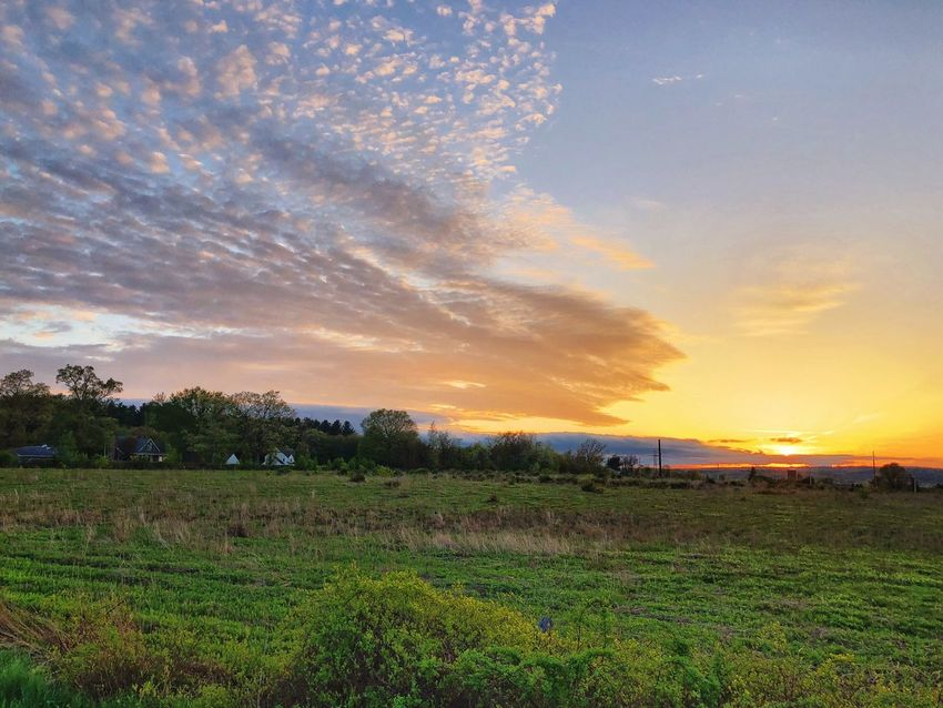 Sunset blowing the Clouds away Sky Beauty In Nature Field Scenics - Nature Cloud - Sky Plant Environment Tranquil Scene Tranquility Landscape Land Growth Nature Sunset No People Agriculture Farm