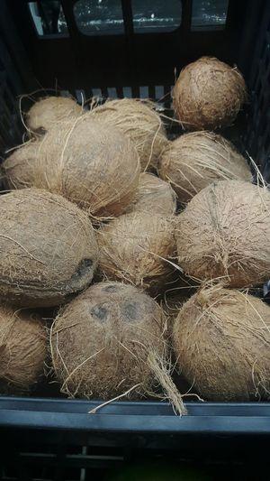 Cocos Coconut Coco Supermarket Supermercado Picoftheday Fruits Fruit Fruta Frutas Frutas Tropicales Tropical Fruit Abundance Freshness
