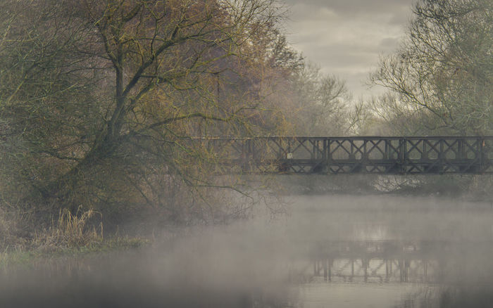 The mist gently floats over the waters of the River Loddon. An old abandoned gantry style bridge spans the water - unnatural in its looks but interesting and contrasting to the nature around. Calm Calmness Misty Quiet Architecture Autumn Bare Tree Beauty In Nature Branch Bridge - Man Made Structure Brume Cloud - Sky Day Fog Metal Structure Mist Misty Morning Misty Mornings Misty Waterscape Nature No People Outdoors Still Tree Water