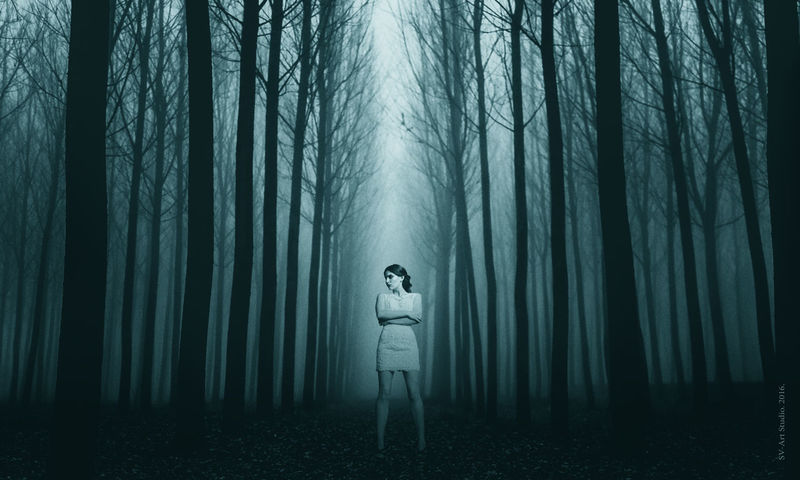 Fog Forest Full Length Nature Night One Person Outdoors People Spooky Tree WoodLand Young Adult Rethink Things