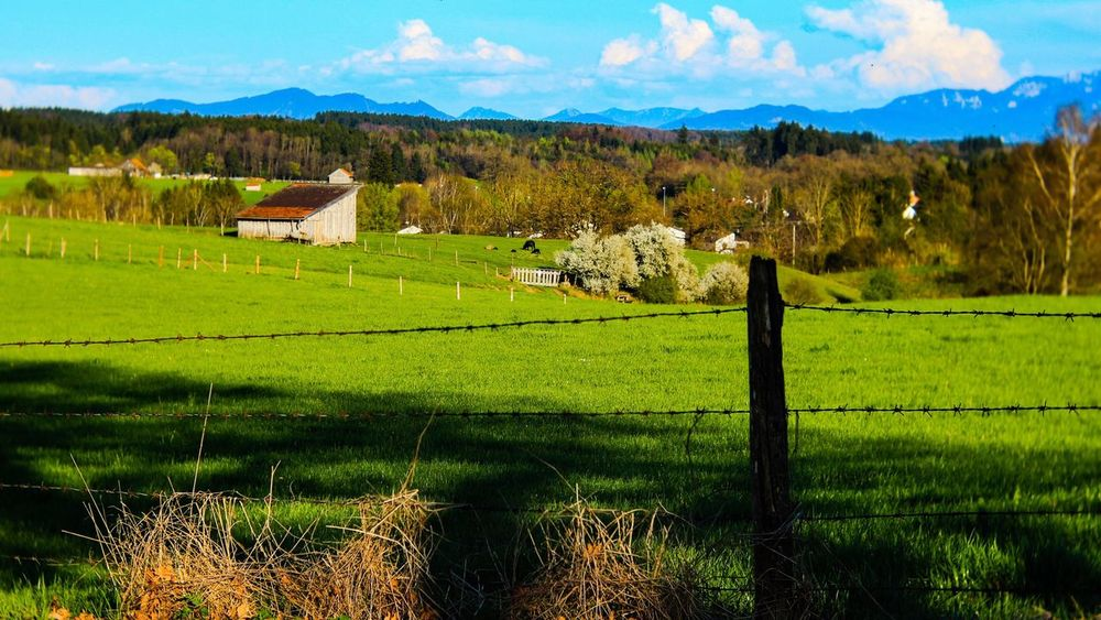 Fencing In Beauty; Field Grass Landscape Agriculture Rural Scene Green Color Scenics Tranquil Scene No People Nature Outdoors Day Tranquility Architecture Beauty In Nature Built Structure Sky Mountain Growth Tree Tranquil Scene Outdoors Landscape #Nature #photography EyeEm Best Shots - Landscape Outdoor Photography Eye4photography