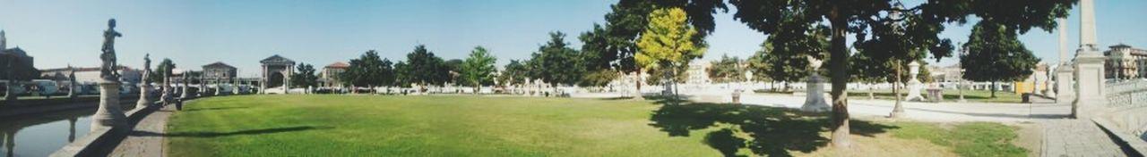 Parque Grass