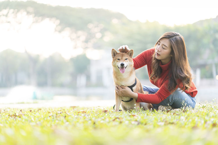 Pet lover concept. an asian girl is playing with a shiba inu dog. woman and dog hugging.